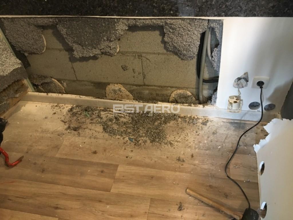 Salle De Bain Sous Les Combles ~ Destruction Odeurs Rongeur Et Intervention Anti Intrusion Rongeurs
