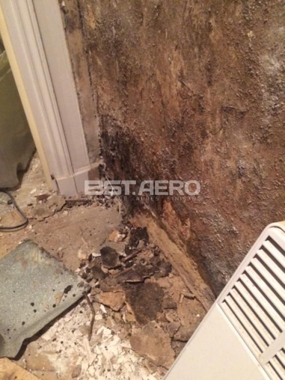 elimination odeur de moisi ou odeur d 39 humidit bst aero. Black Bedroom Furniture Sets. Home Design Ideas